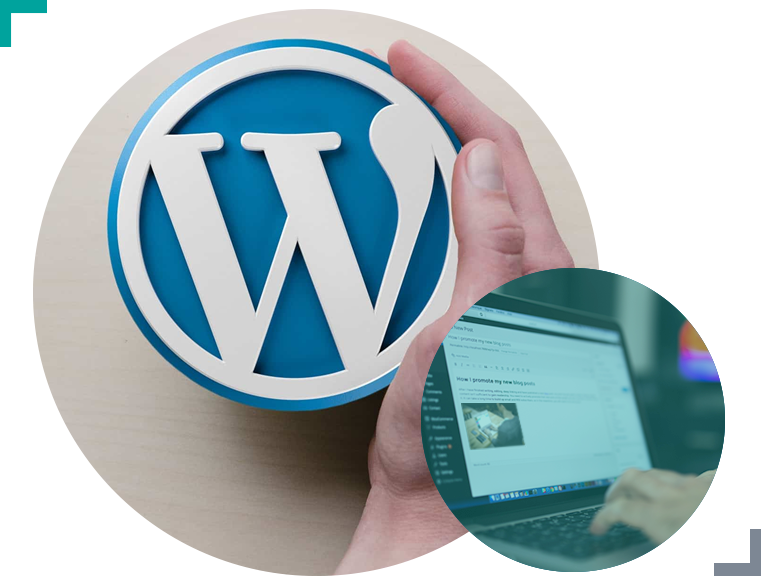 Choose WordPress to manage your blog